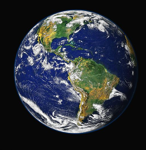 Photo of Plant Earth